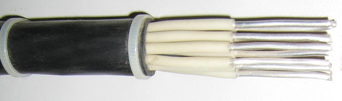 акввг кабель алюминиевый силовой в пвх изоляции 14 х 2.5 мм2 фото